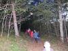 Ut i skogen ska vi gå...
