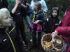 Scouter i skogen plockar svamp